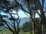 view from presidio