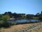 presidio pond