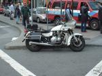 Richmond, pig, bikes