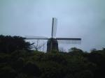windmill behind trees